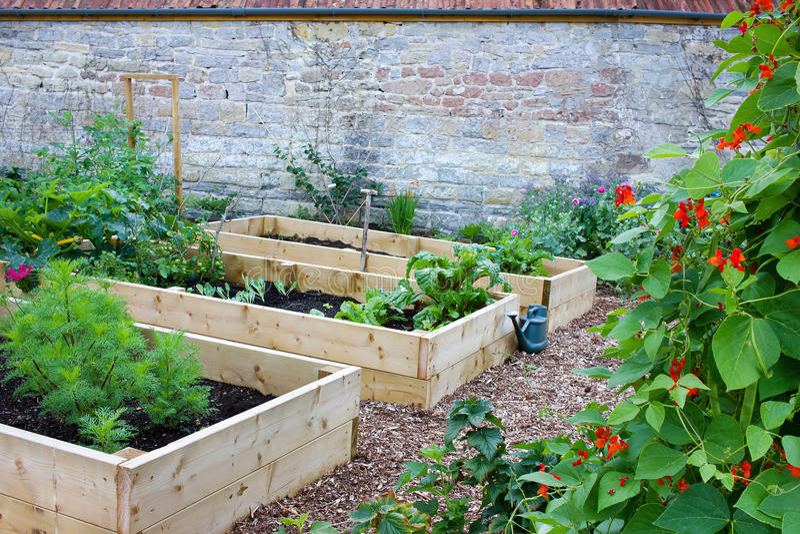 Légume et jardin d'agrément rustiques de pays avec les lits augmentés image stock