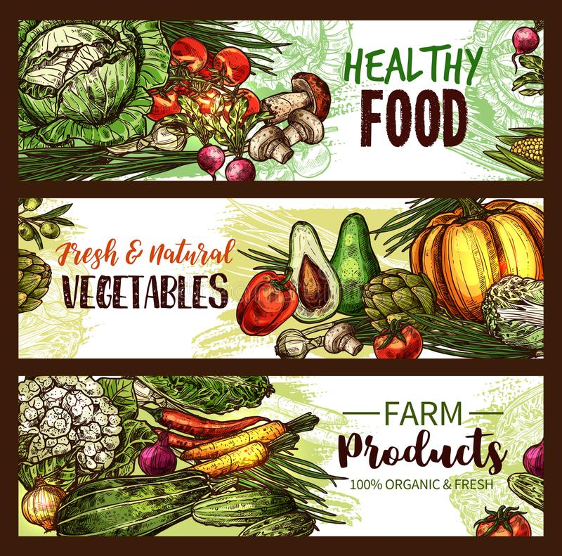 Légume, fruit, bannière de champignon des veggies frais illustration libre de droits