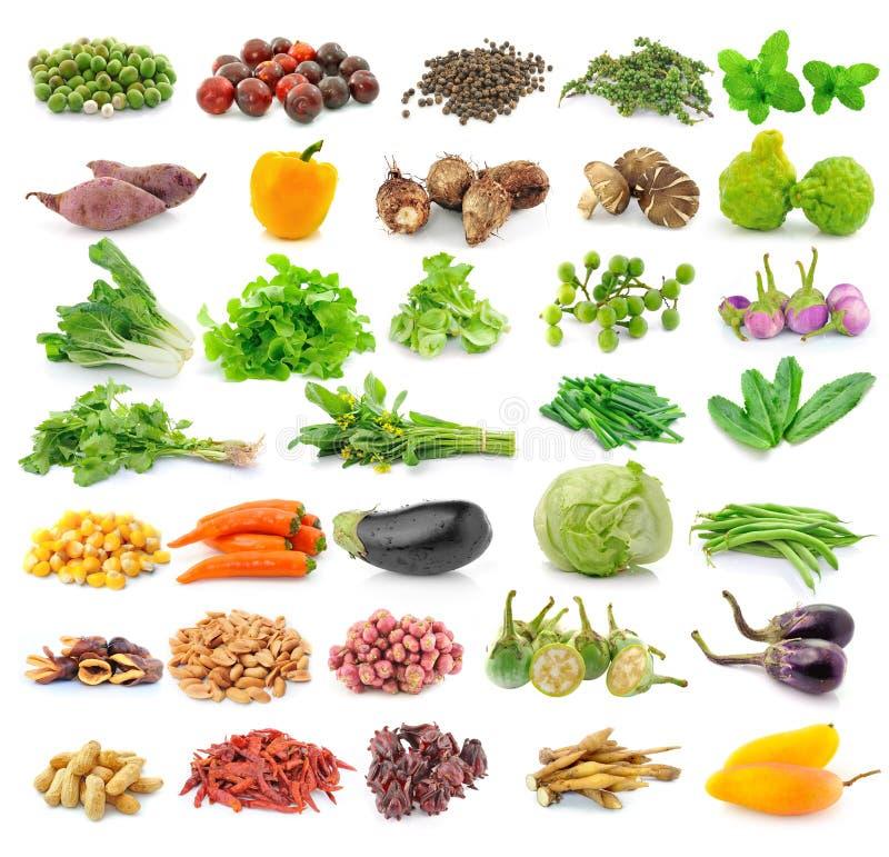 Légume fruit sur le fond blanc image stock