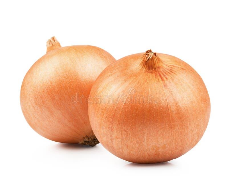 Légume orange d'oignon image stock