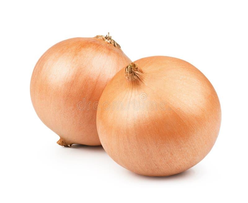 Légume orange d'oignon images stock