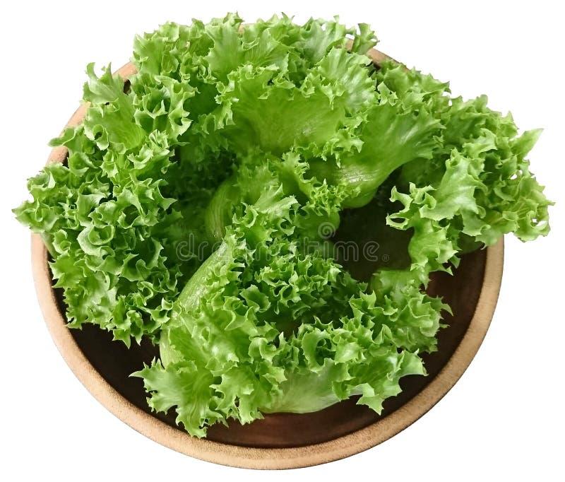 Légume organique pour la salade 'Iceberg' verte de frillice de salade d'isolement sur le fond blanc photos stock