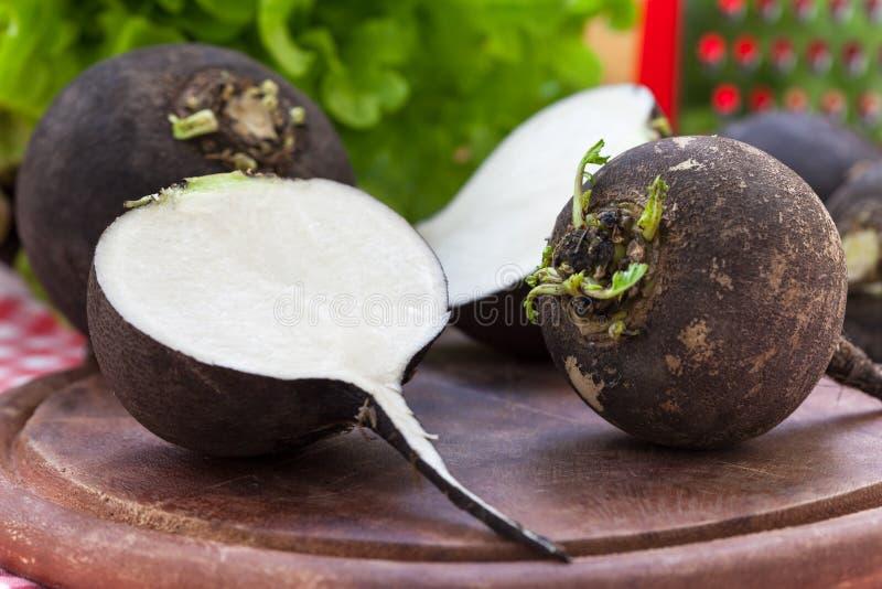 Légumes à racine noirs de radis images stock