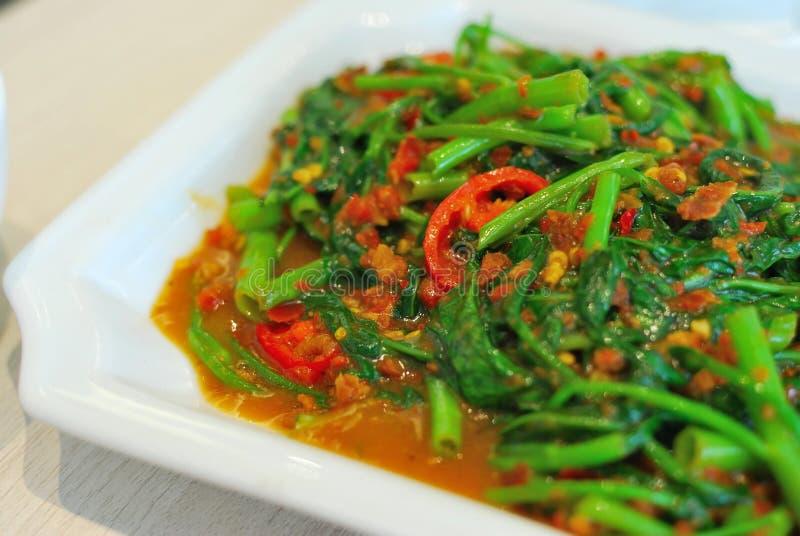 Légumes épicés somptueux de type chinois photo libre de droits