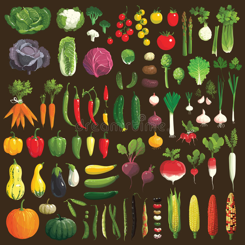 Légumes illustration de vecteur