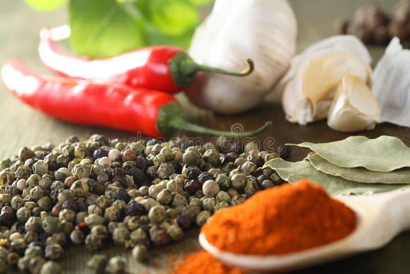 Légumes avec l'épice photo stock