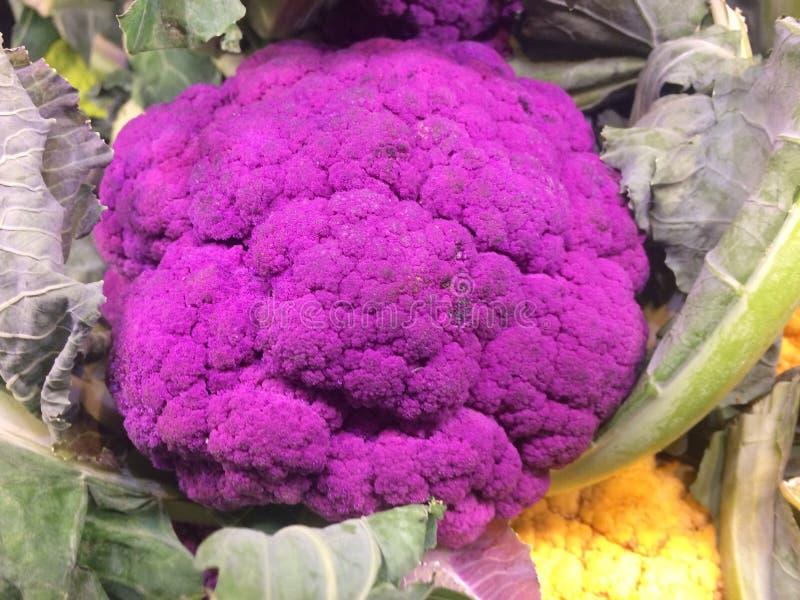 légumes Chou-fleur coloré cru frais images stock
