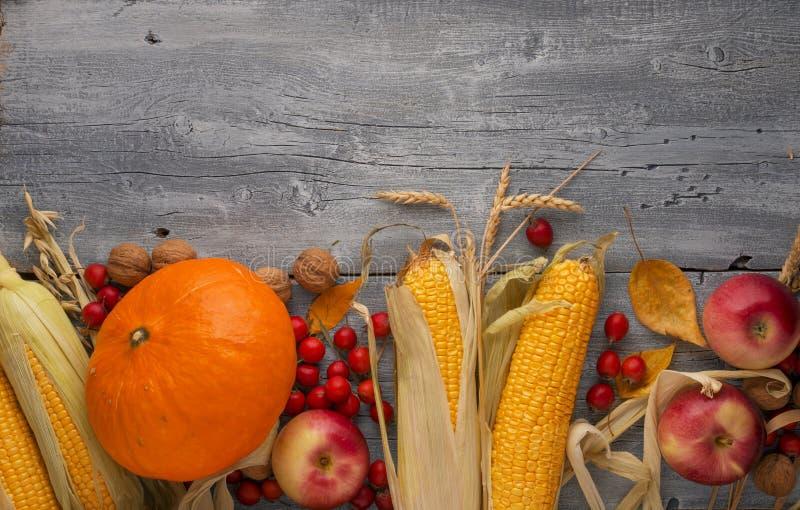 Légumes d'automne, potiron, maïs, pommes sur le fond en bois de table Jour de thanksgiving, l'espace de copie photos stock
