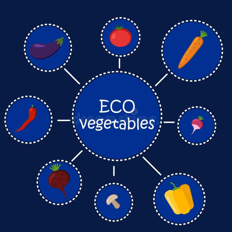 Légumes d'Eco Nourriture saine infographic Affiche de légumes dans le style plat Le concept de hippie d'illustration de vecteur,  illustration libre de droits