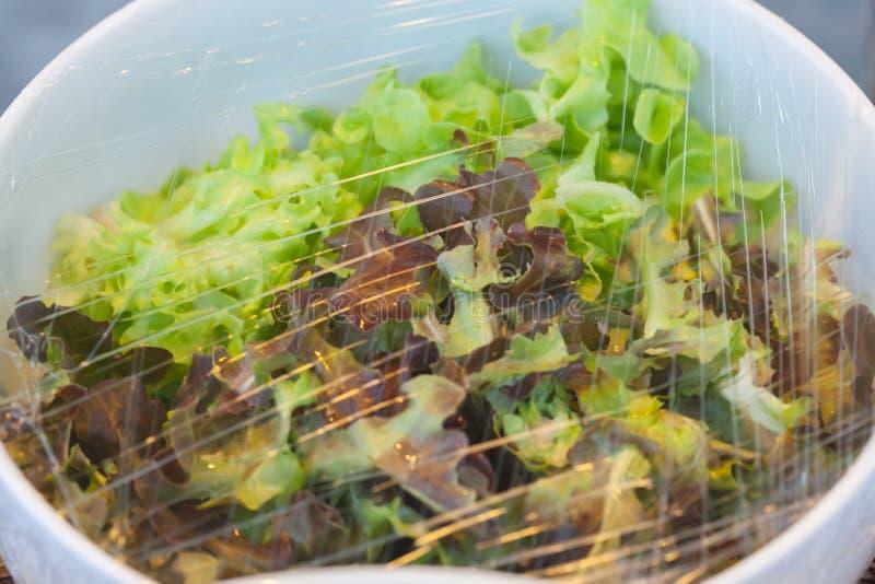 Légumes dans un bol en verre images stock