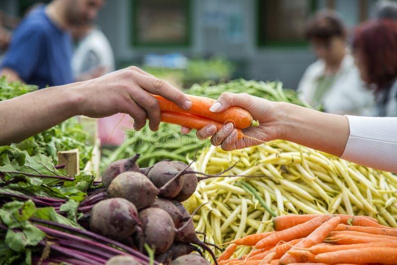 Légumes de achat de femme sur le marché image stock