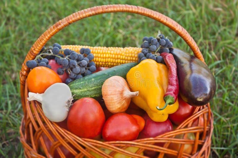 Légumes de fond d'aliment biologique images libres de droits