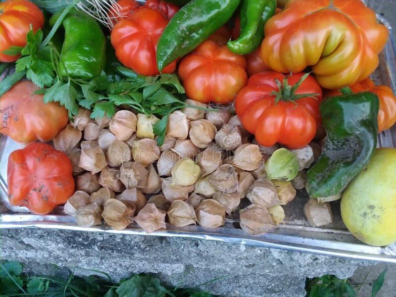 Légumes de jardin d'héritage photographie stock