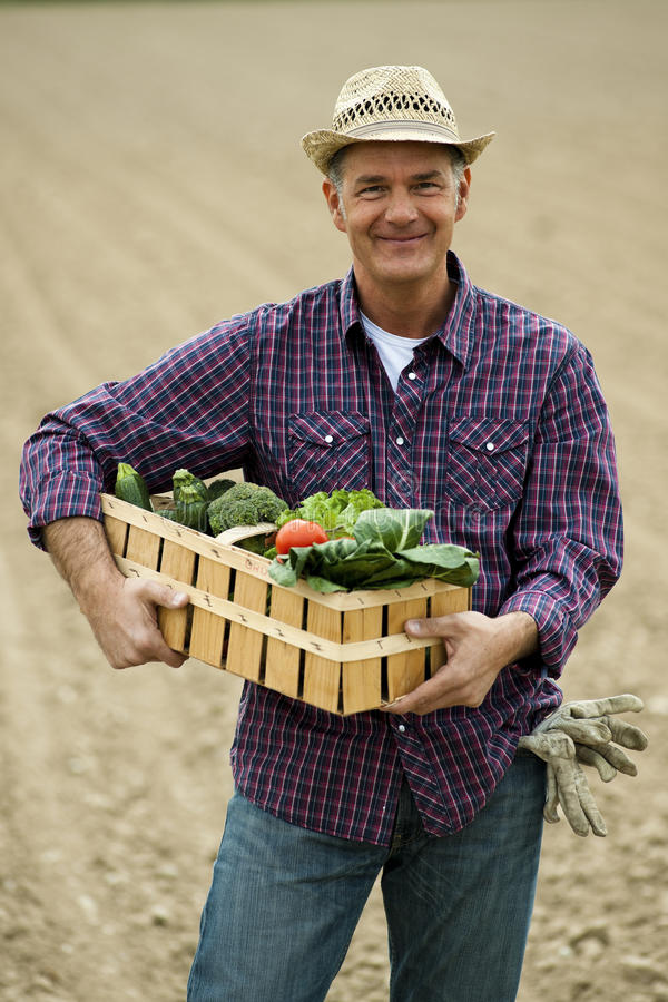Légumes de transport de fermier photo libre de droits