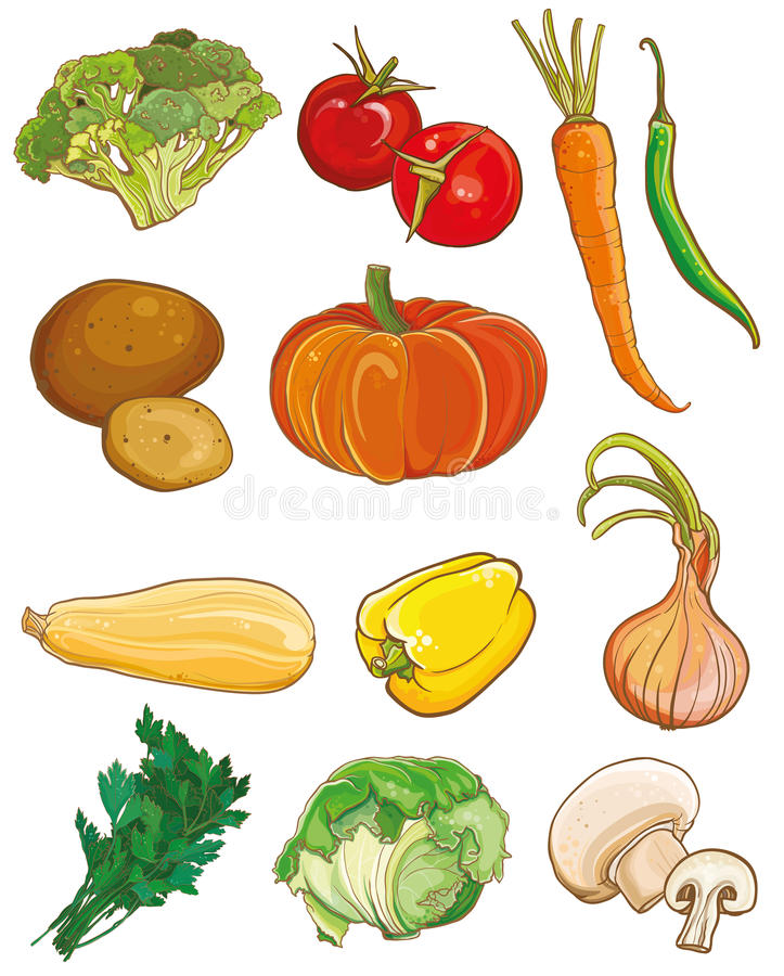 Légumes de vecteur réglés Ingrédients de nourriture illustration de vecteur