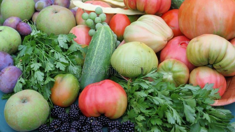 Légumes et fruits photographie stock libre de droits