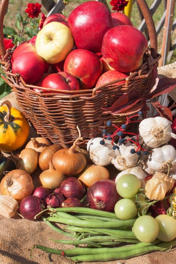 l gumes et pommes dans un panier jour d 39 automne dans le jardin nourriture saine pour le r gime. Black Bedroom Furniture Sets. Home Design Ideas