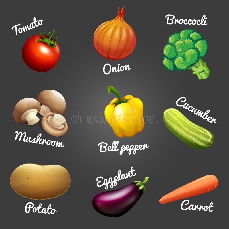 Légumes frais avec des noms illustration libre de droits