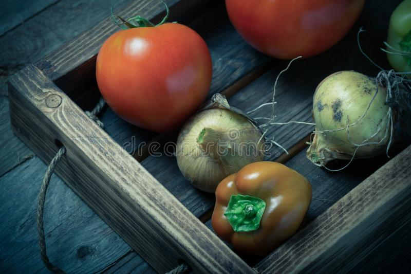 Légumes frais dans une boîte rustique brûlée de texture pour le fond Conseil en bois superficiel par les agents approximatif tone photographie stock libre de droits