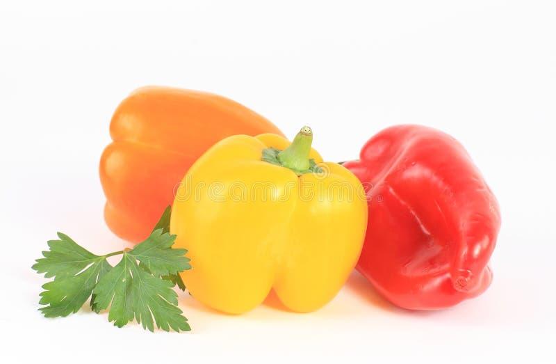 Légumes frais de poivre d'isolement images libres de droits