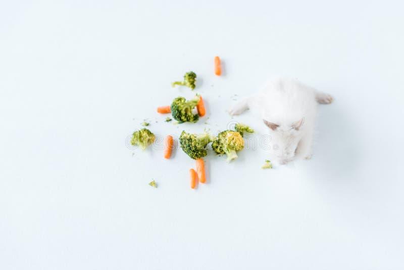 Légumes frais et lapin velu mignon sur le blanc photographie stock libre de droits