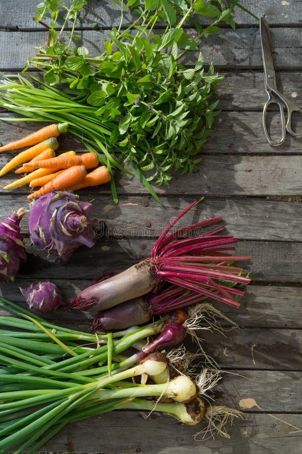 Légumes frais sur une table en bois image stock