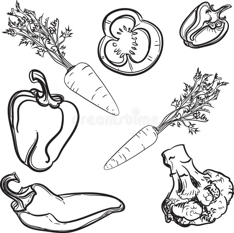 Légumes, lignes, dessiné, stylisées, légumes, vecteur photo libre de droits