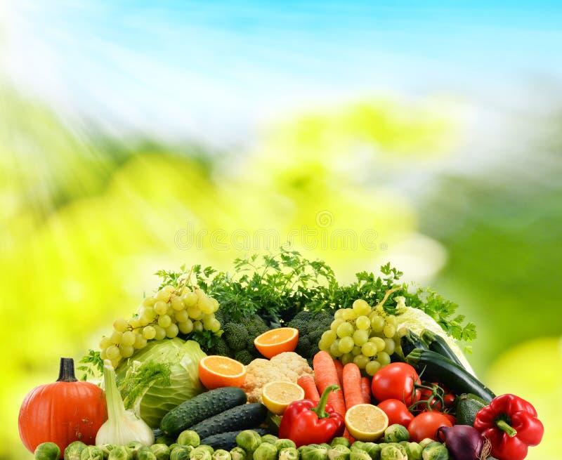 Légumes organiques crus assortis photographie stock