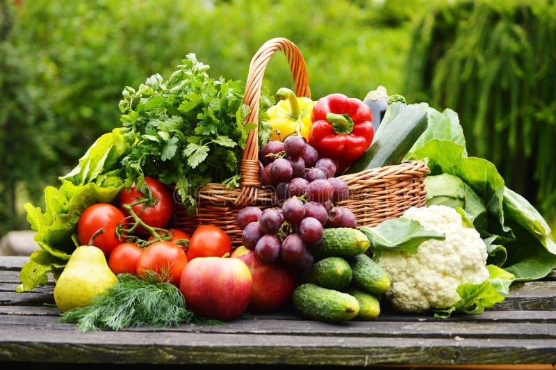 Légumes organiques dans le panier en osier dans le jardin photographie stock libre de droits