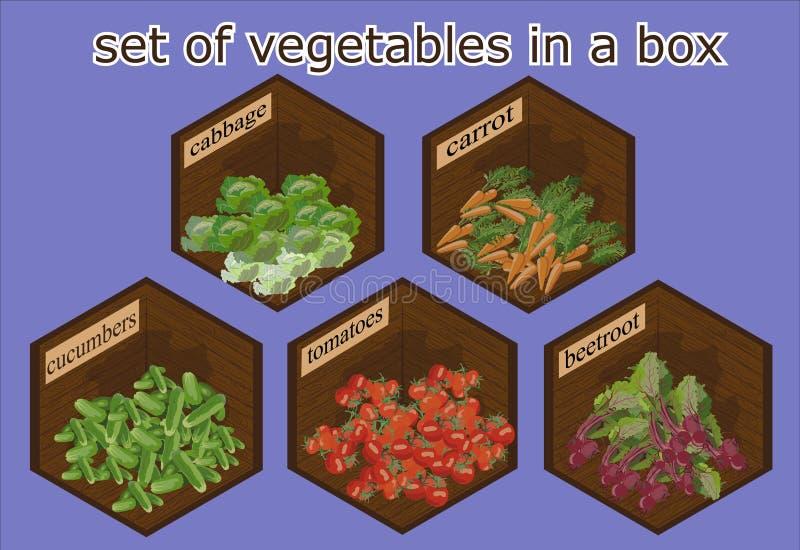 Légumes réglés dans la boîte en bois images libres de droits