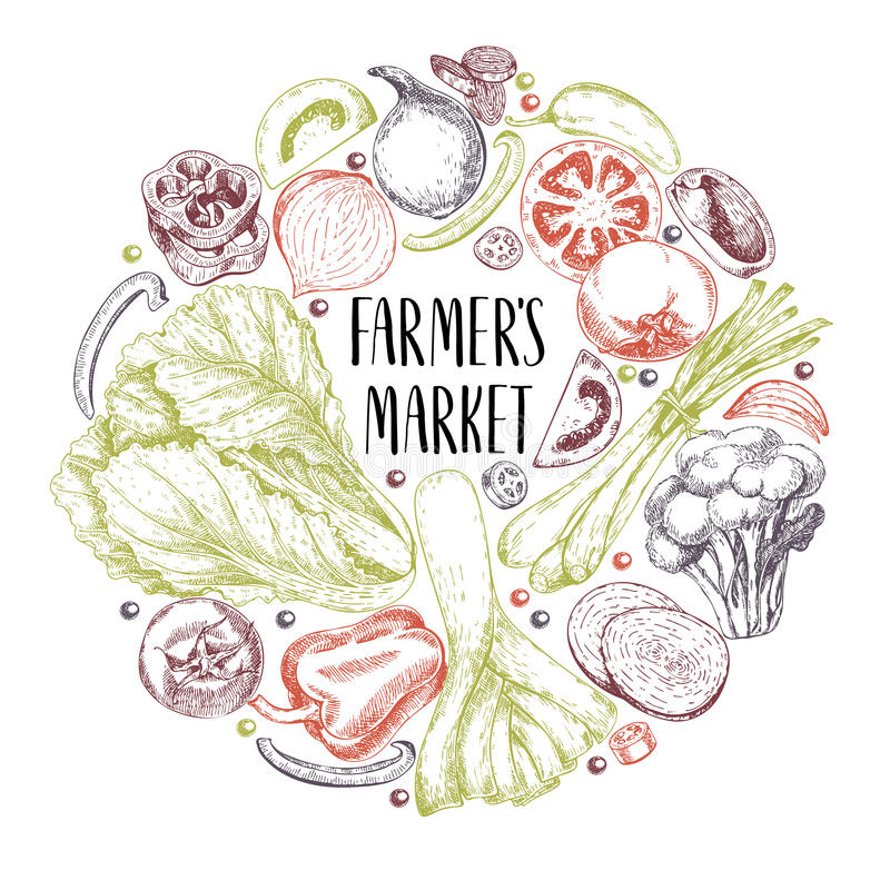 Légumes tirés par la main de ferme de vecteur Composition ronde en frontière Tomate, oignon, chou, poivre, poireau Art gravé orga illustration stock
