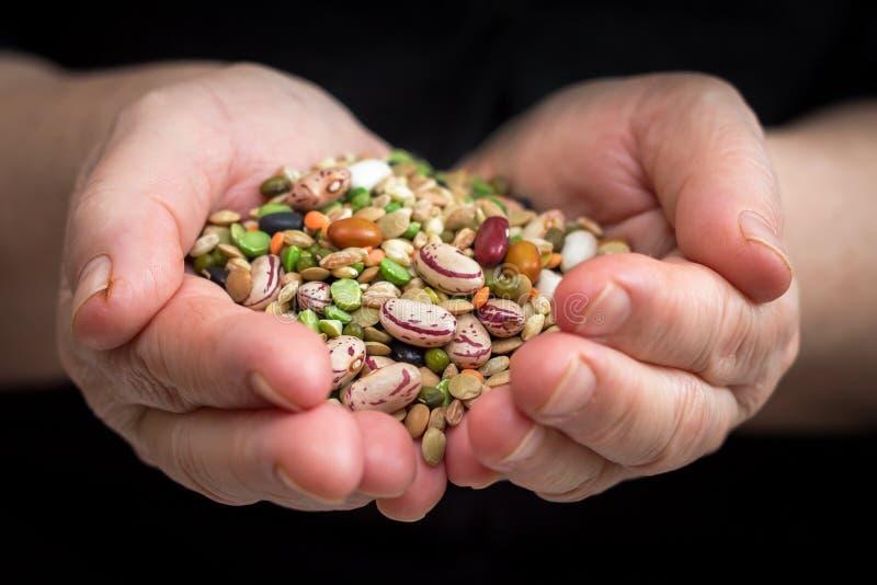 Légumineuses et céréales mélangées photographie stock libre de droits