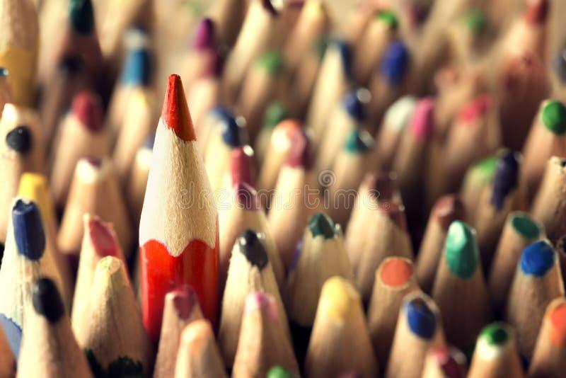 Líder Concept do lápis, afiado na multidão usada dos lápis, ideia nova foto de stock royalty free
