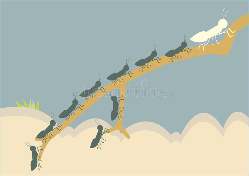 Líder de la hormiga, libre illustration