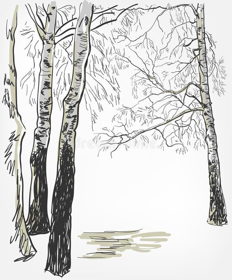 Línea árbol del bosquejo del vector del fondo del abedul de la acuarela stock de ilustración