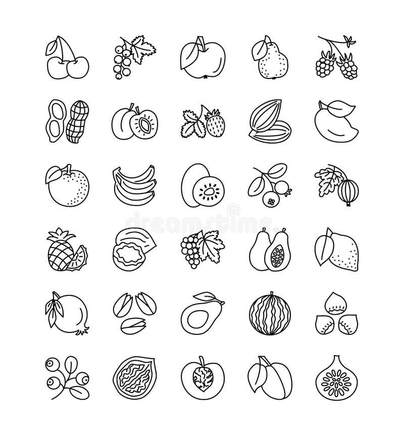 Línea colección del vector del icono Frutas, bayas y nueces V sano stock de ilustración