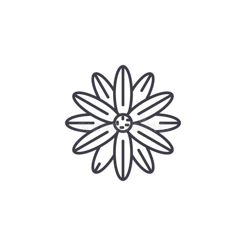 Línea concepto de la magnolia del icono Muestra plana del vector de la magnolia, símbolo, ejemplo libre illustration