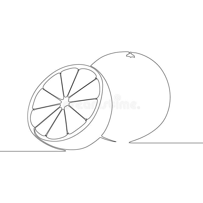 Línea continua naranja, fruta tropical de la fruta cítrica Ilustraci?n del vector ilustración del vector
