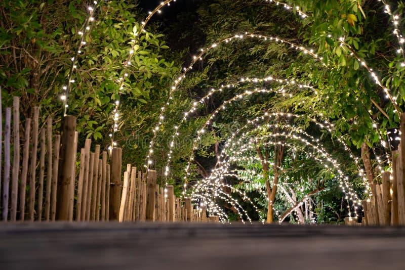 Línea de iluminación colgada de la decoración de los árboles para el concepto de cueva en la terraza de madera caminar con los imágenes de archivo libres de regalías