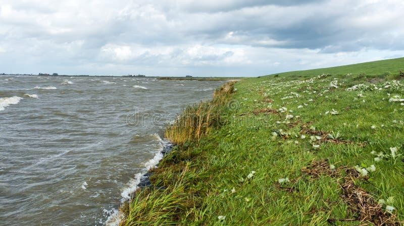 Línea de la costa del lago de los hollands imagen de archivo libre de regalías