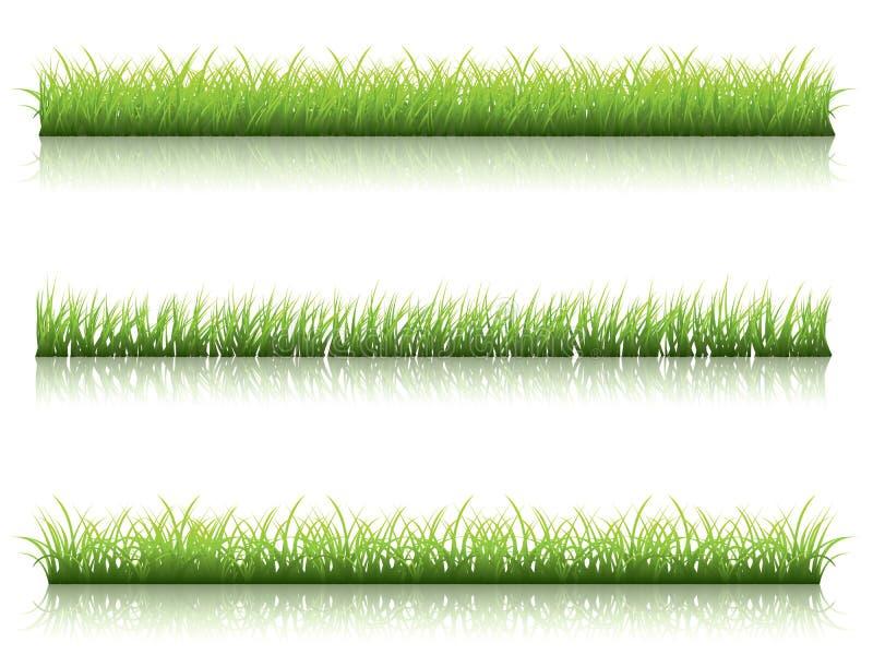 Línea de la hierba verde ilustración del vector