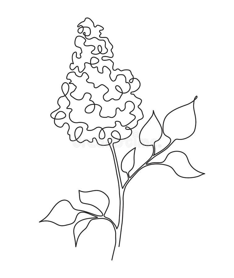 Línea de la lila una libre illustration