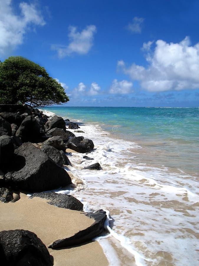 Línea de la playa de barlovento foto de archivo libre de regalías