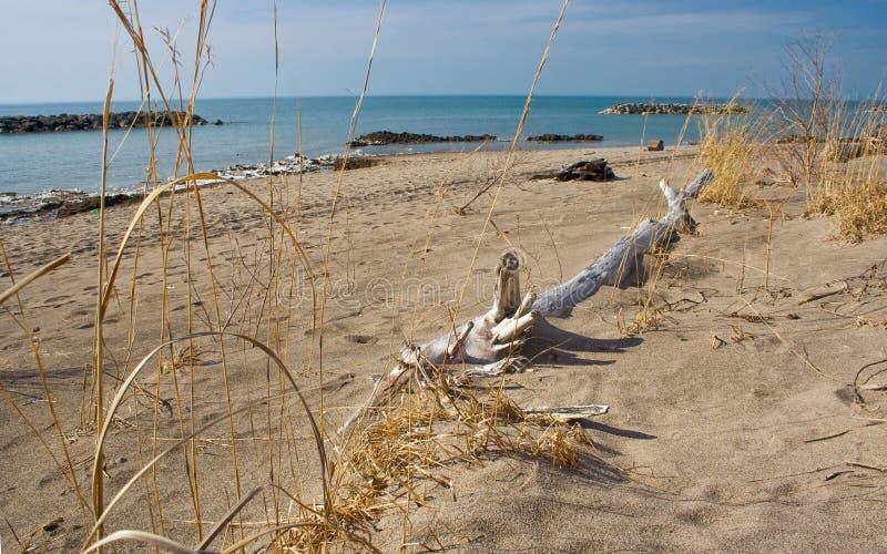 Línea de la playa de Erie de lago imagen de archivo libre de regalías