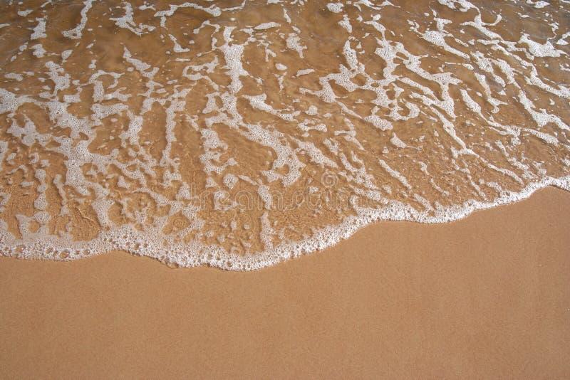 Línea de la playa de la playa