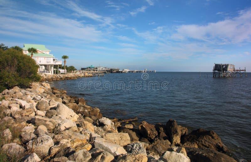 Línea de la playa dominante del cedro imagen de archivo libre de regalías
