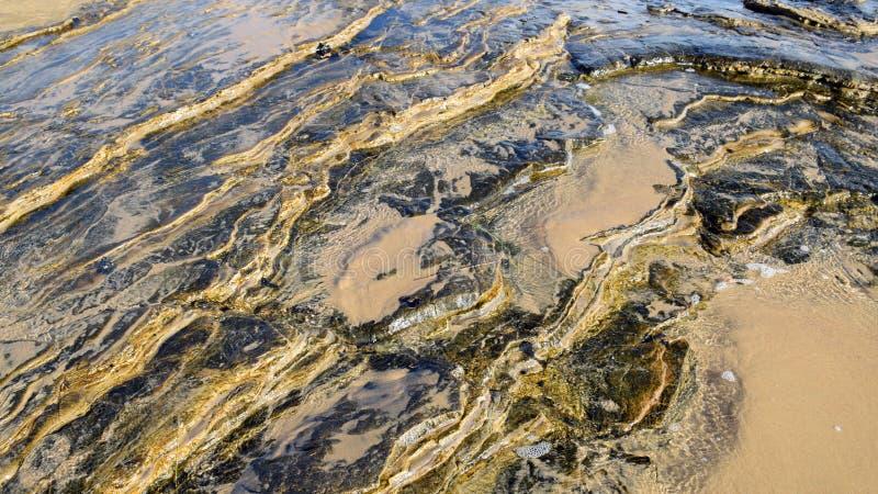 Línea de la playa rocosa en Crystal Cove State Park, California meridional fotografía de archivo libre de regalías