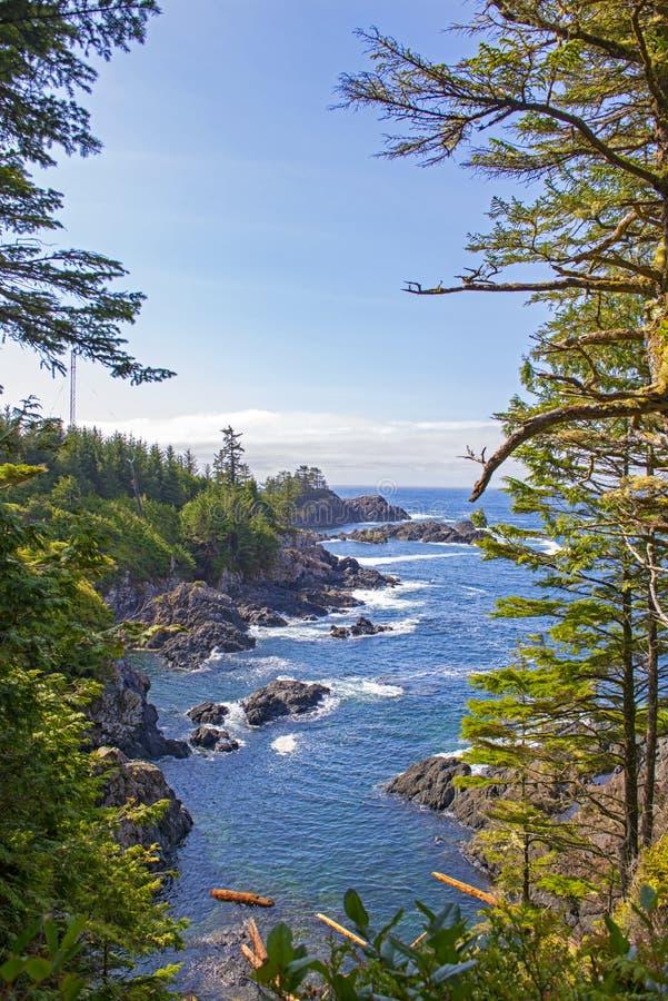 Línea de la playa rugosa del rastro pacífico salvaje en Ucluelet, isla de Vancouver, A.C. imágenes de archivo libres de regalías