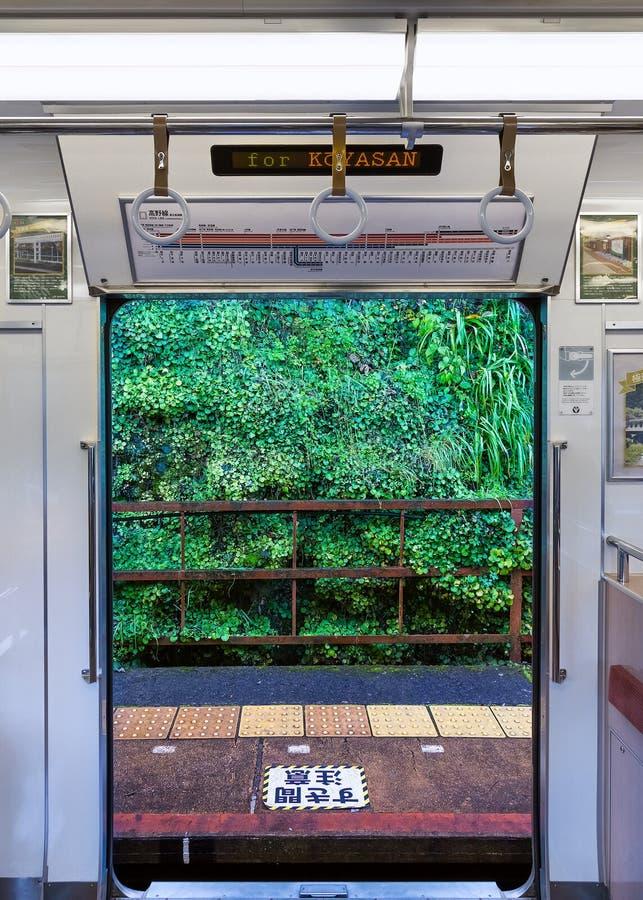 Línea de Nankai Koya en Wakayama, Japón foto de archivo libre de regalías