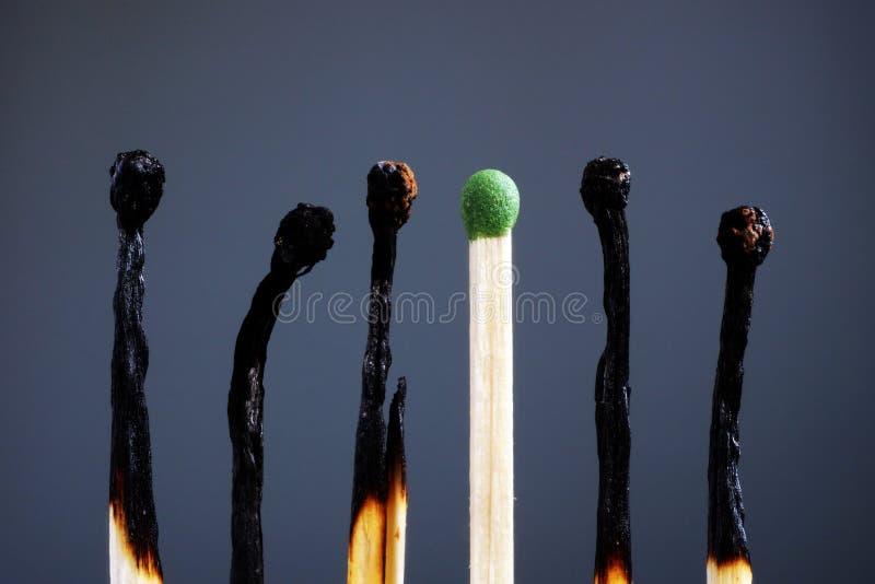Línea de partidos quemados y uno a estrenar Individualidad, dirección, quemadura en el trabajo y energía fotografía de archivo